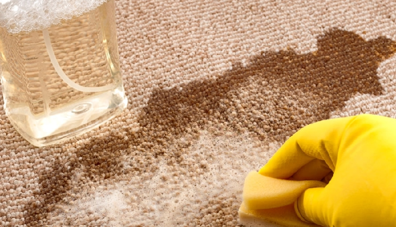 The 15 Best Carpet Stain Removal Tips
