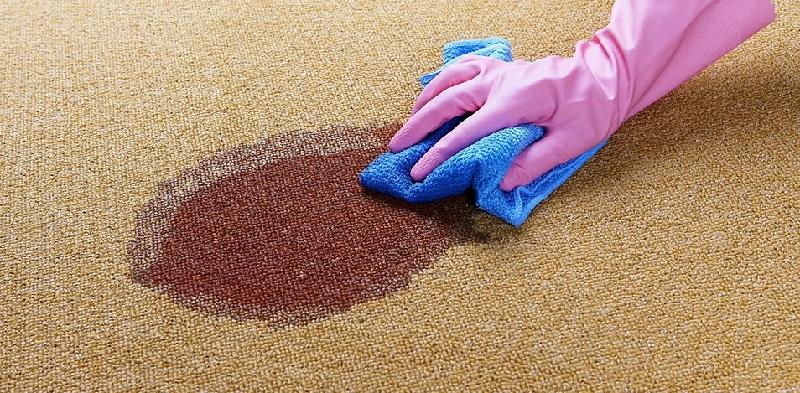 Top 10 DIY Carpet Cleaning Tips